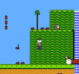 Super-Mario-Bros.-2-USA_019